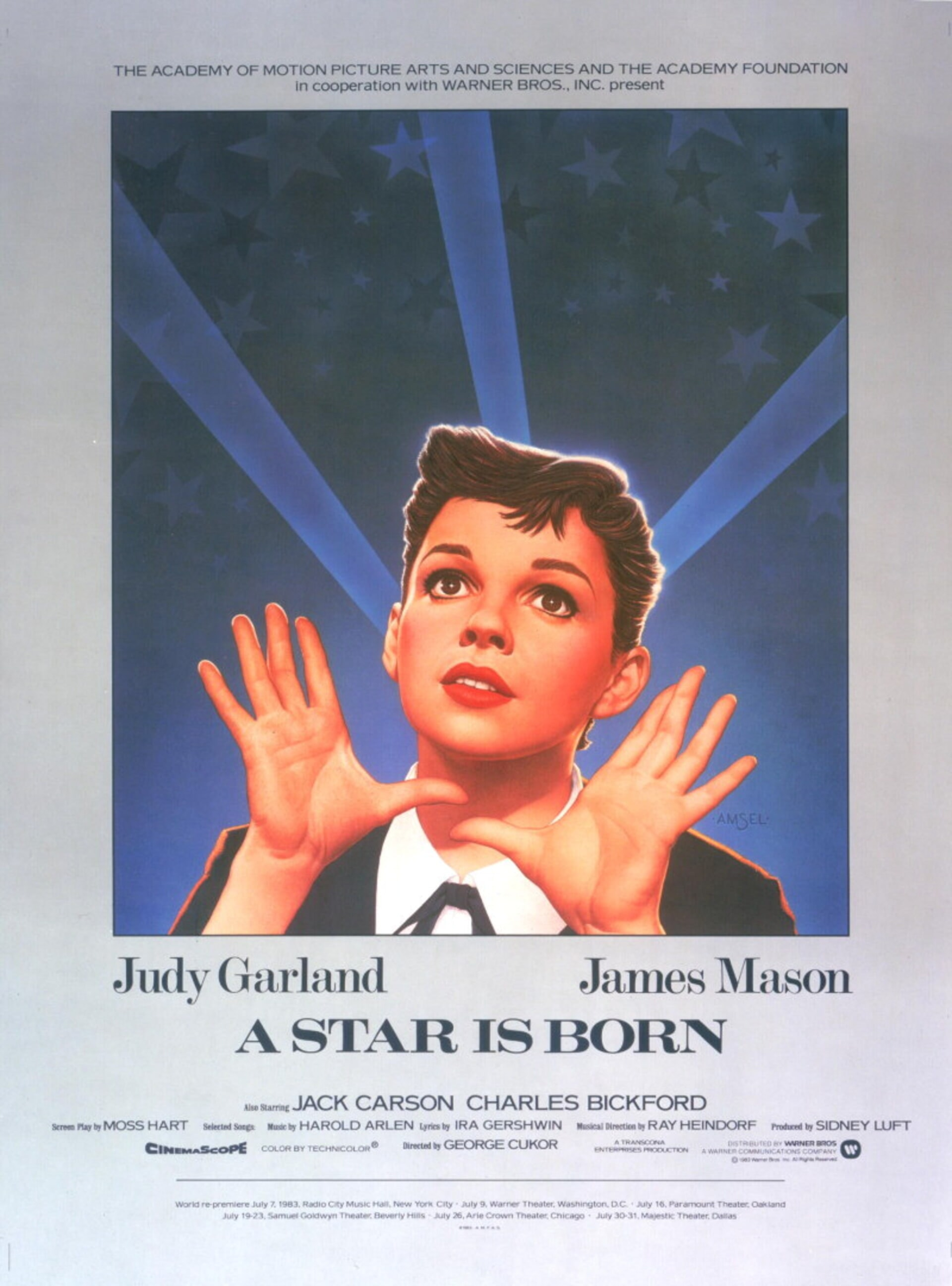 A Star Is Born (1954) - Poster 1