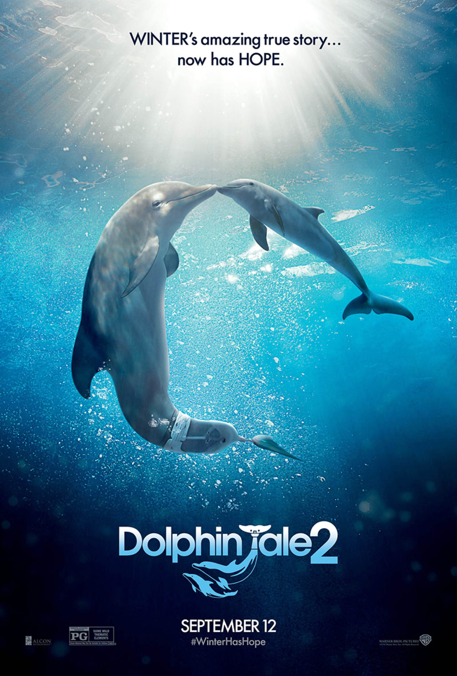 Dolphin Tale 2 - Poster 2