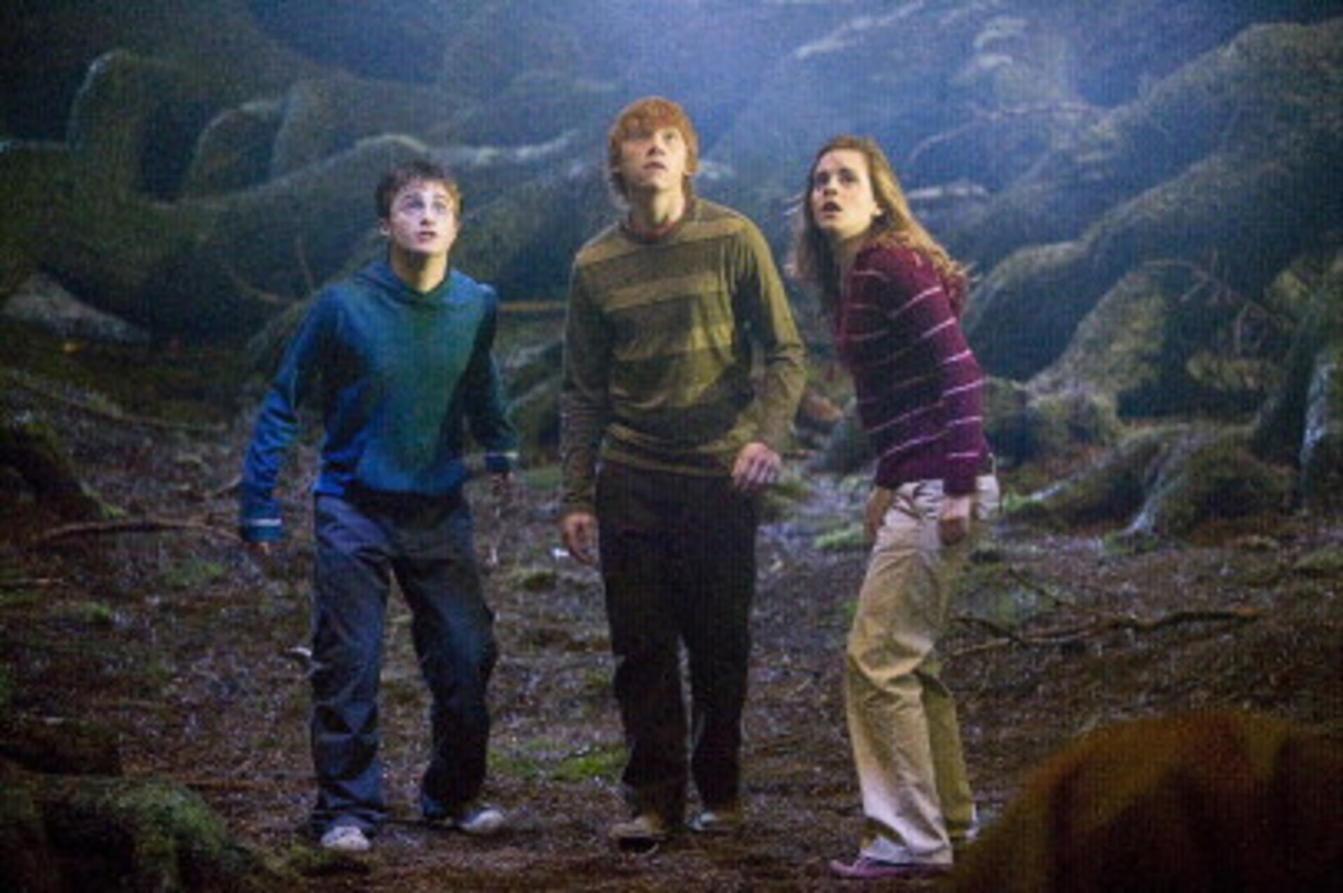 Harry Potter and the Order of the Phoenix - Image 14