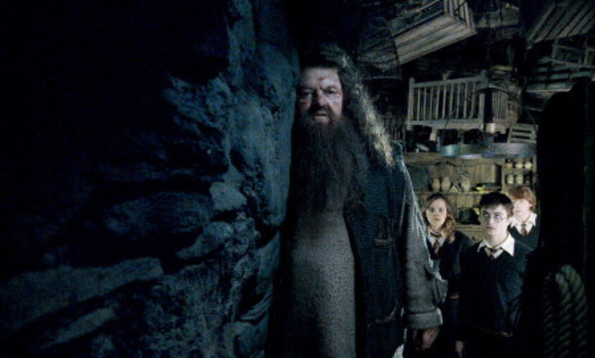 Harry Potter and the Order of the Phoenix - Image 22