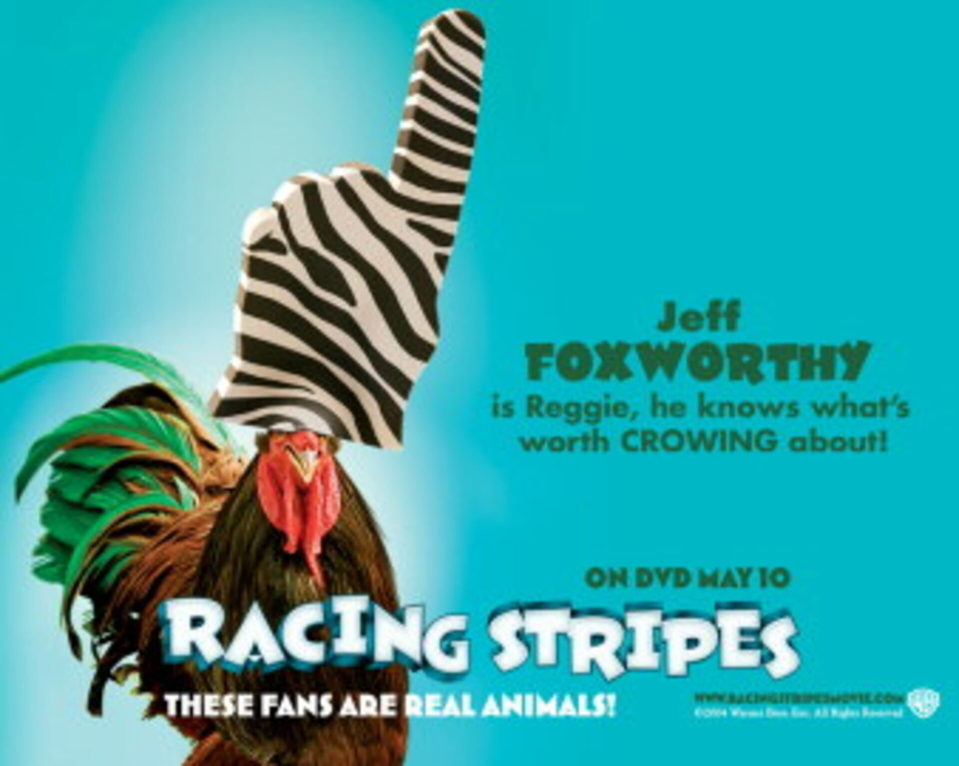 Racing Stripes - Image 2
