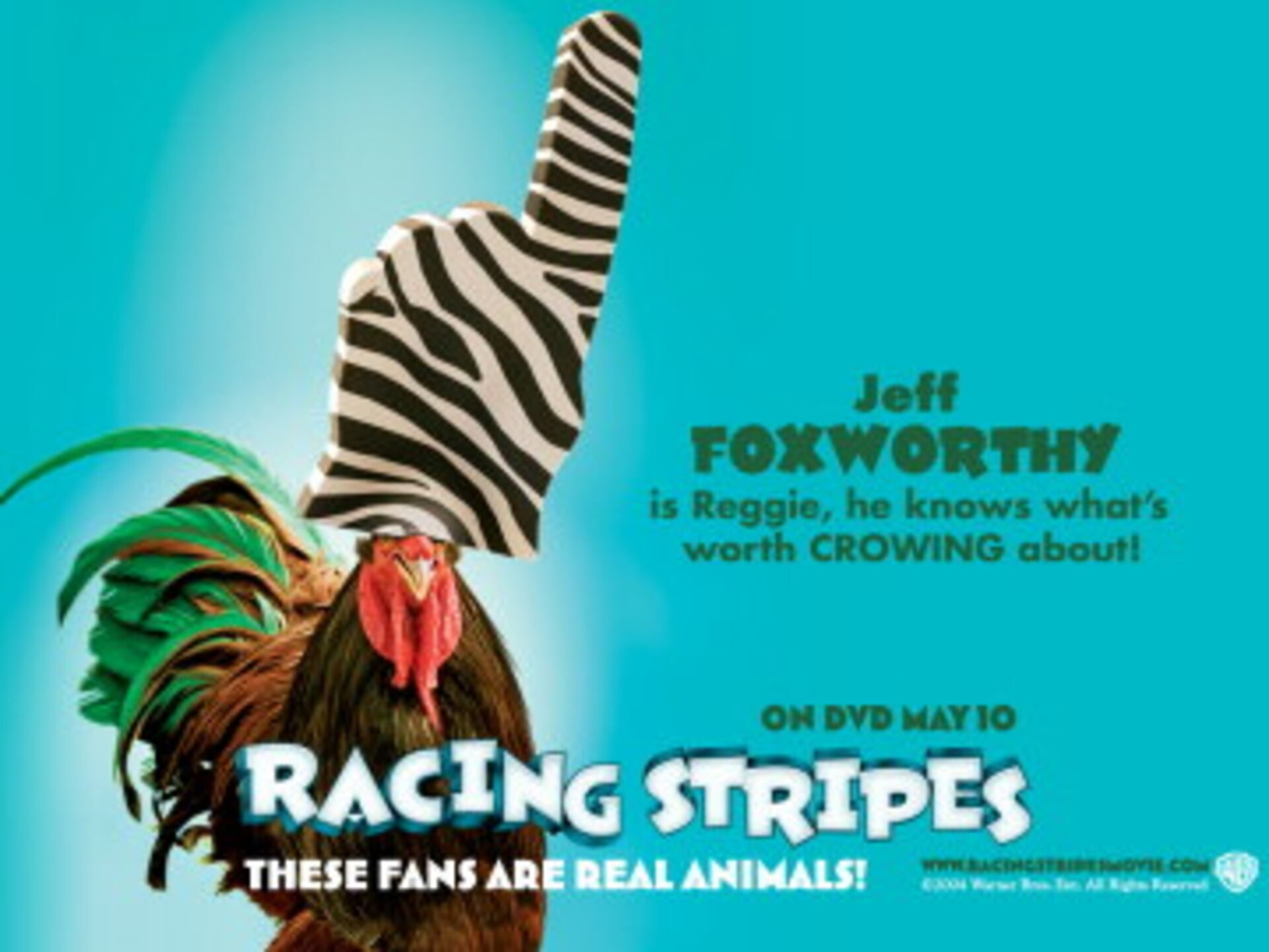 Racing Stripes - Image 42