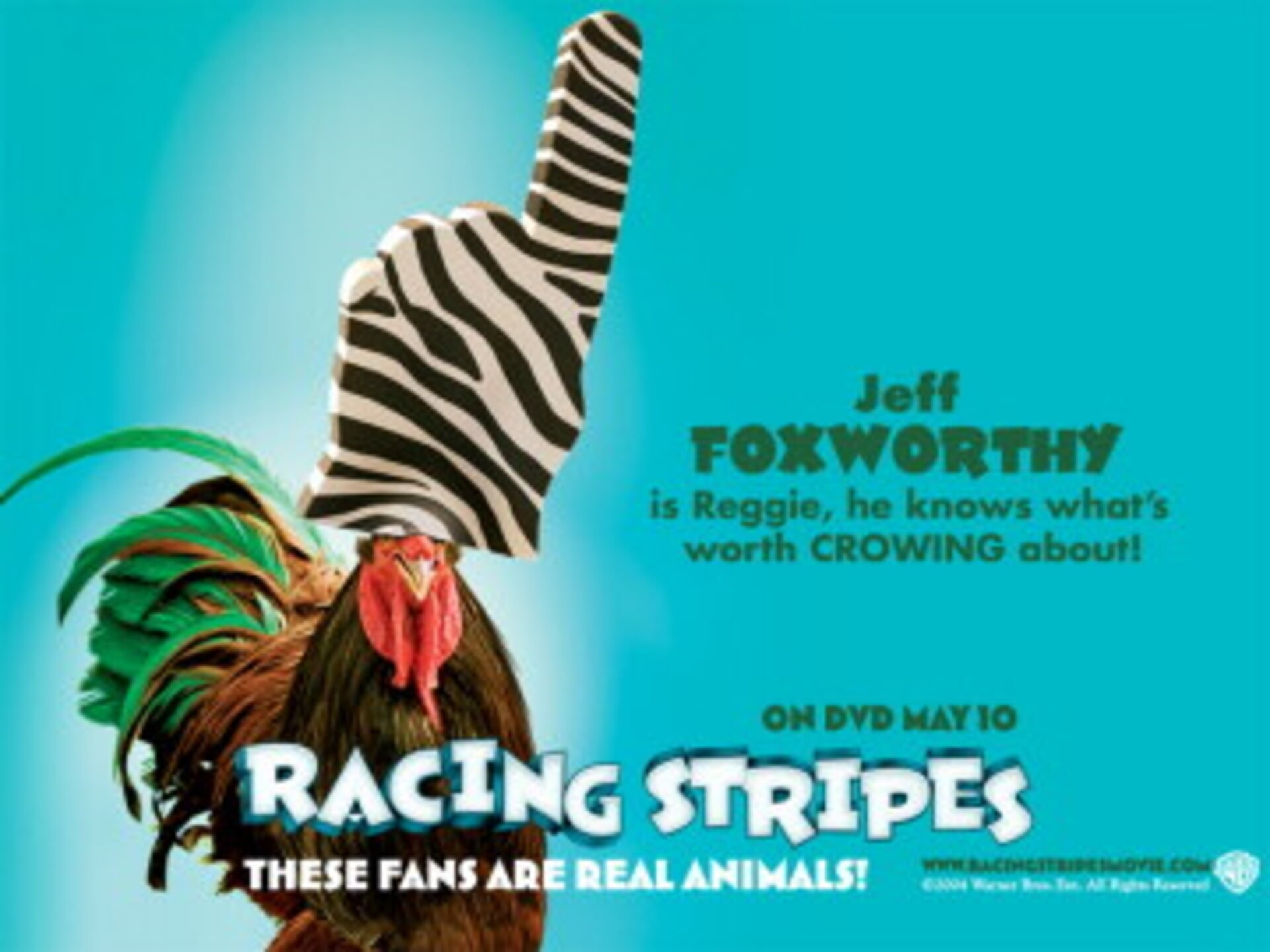 Racing Stripes - Image 43