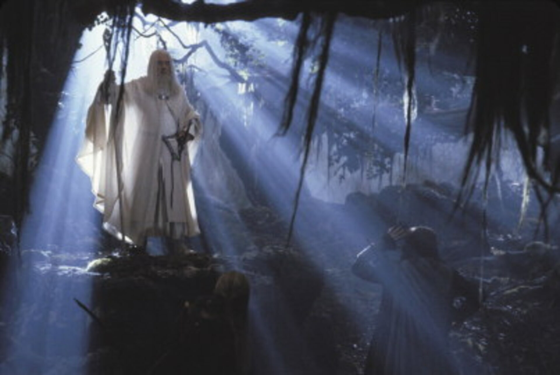The Lord of the Rings: The Two Towers - Image 1
