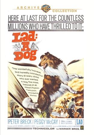 Lad: A Dog - Image - Image 10