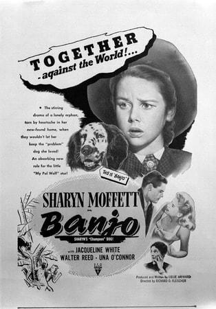 Banjo - Image - Image 4