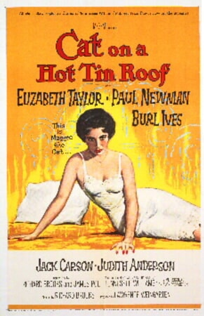 Cat on a Hot Tin Roof - Image - Image 7