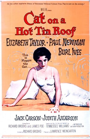 Cat on a Hot Tin Roof - Image - Image 12
