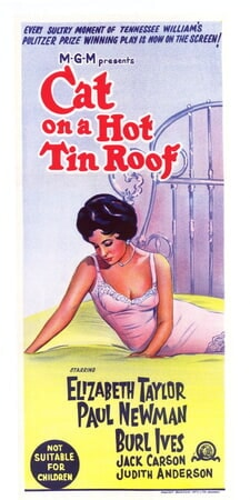 Cat on a Hot Tin Roof - Image - Image 13