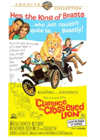 Clarence, the Cross-eyed Lion - Image - Image 1