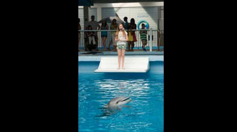 Dolphin Tale 2 - Image - Image 6
