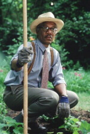 Driving Miss Daisy - Image - Image 13
