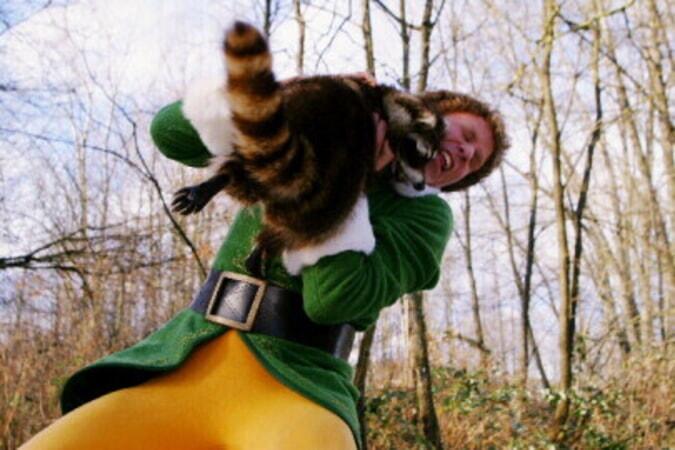Elf - Image - Image 11