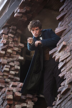 "EDDIE REDMAYNE as Newt Scamander and in Warner Bros. Pictures' fantasy adventure ""FANTASTIC BEASTS AND WHERE TO FIND THEM,"""