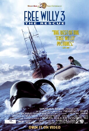 Free Willy 3: the Rescue - Image - Image 6