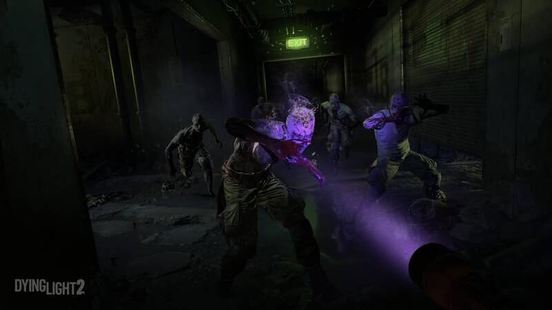 Dying Light: The Following - Image - Image 1