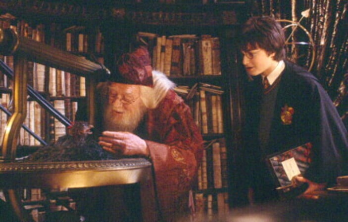 Harry Potter and the Chamber of Secrets - Image - Image 2