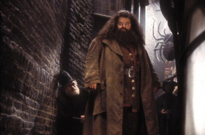 Harry Potter and the Chamber of Secrets - Image 8