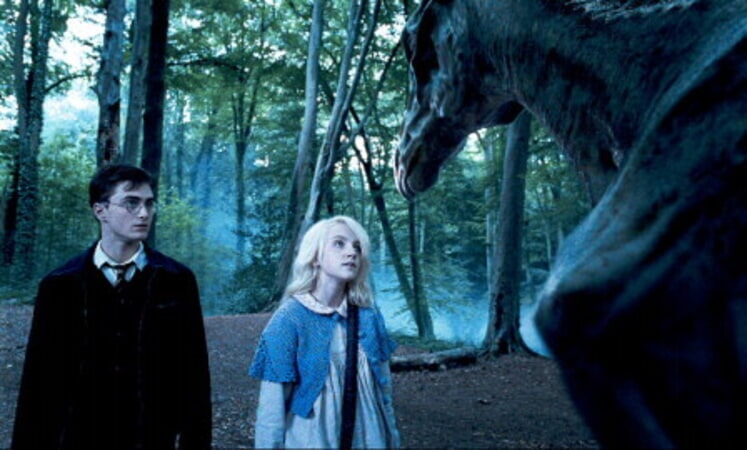 Harry Potter and the Order of the Phoenix - Image - Image 9
