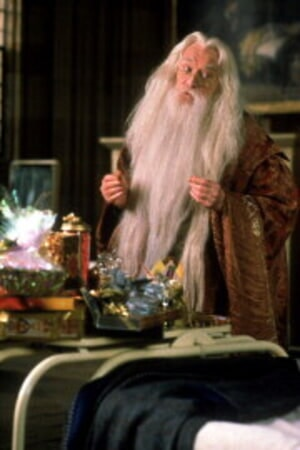 Harry Potter and the Sorcerer's Stone - Image - Image 11