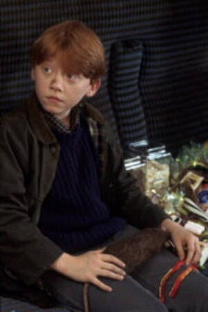 Harry Potter and the Sorcerer's Stone - Image - Image 4