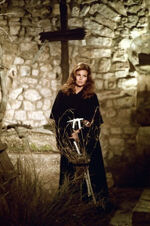 raquel welch in the last of sheila