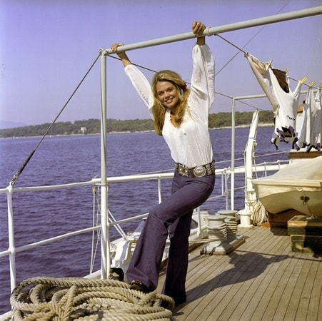 dyan cannon in the last of sheila