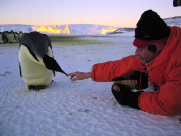 March of the Penguins - Image - Image 16