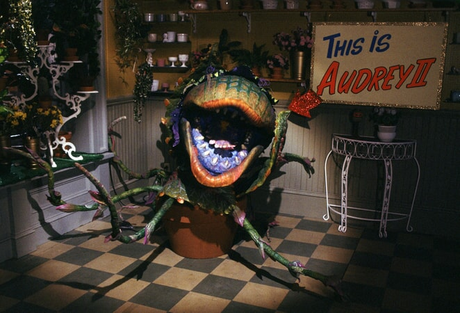 Little Shop of Horrors - Image - Image 3