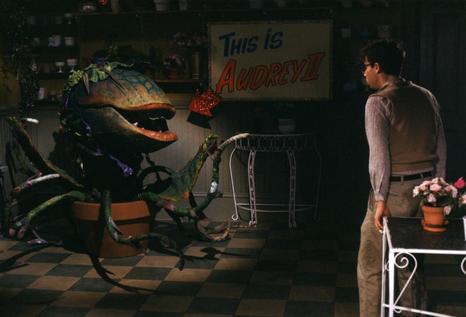 Little Shop of Horrors - Image - Image 7