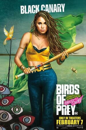 Birds of Prey (and the Fantabulous Emancipation of One Harley Quinn) - Poster 5