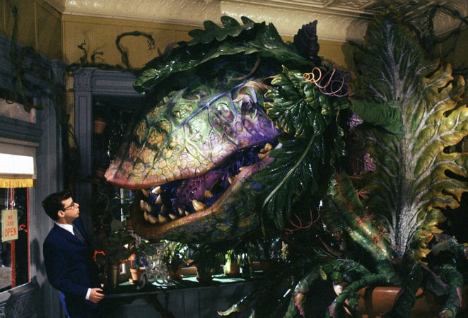 Little Shop of Horrors - Image - Image 10