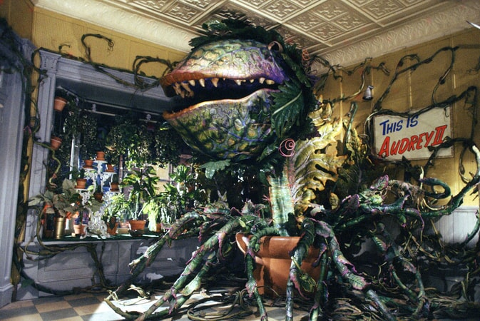 Little Shop of Horrors - Image - Image 16
