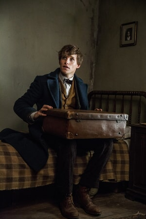 "EDDIE REDMAYNE as Newt Scamander in Warner Bros. Pictures' fantasy adventure ""FANTASTIC BEASTS AND WHERE TO FIND THEM,"" a Warner Bros. Pictures release."