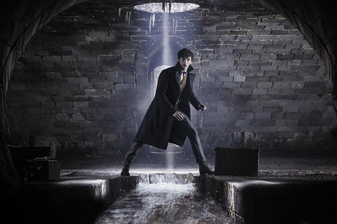 """EDDIE REDMAYNE as Newt in Warner Bros. Pictures' fantasy adventure """"FANTASTIC BEASTS: THE CRIMES OF GRINDELWALD,"""" a Warner Bros. Pictures release. Photo by Jaap Buitendijk"""