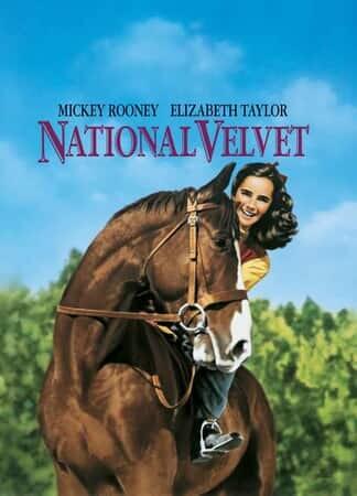 National Velvet - Image - Image 19