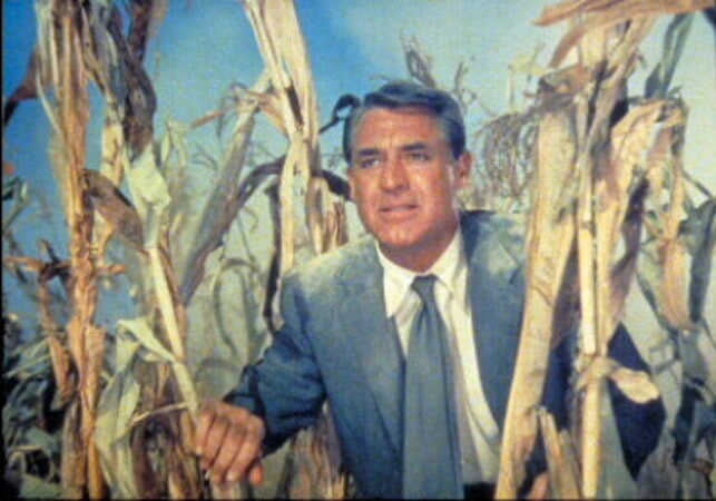 North by Northwest - Image - Image 3