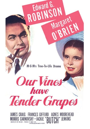 Our Vines Have Tender Grapes - Image - Image 1