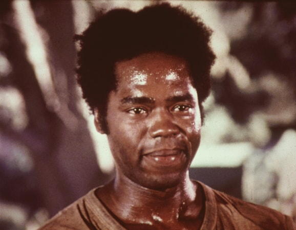 Roots: The Complete Miniseries - Image - Image 28