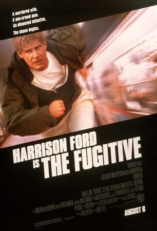 The Fugitive - Poster 1