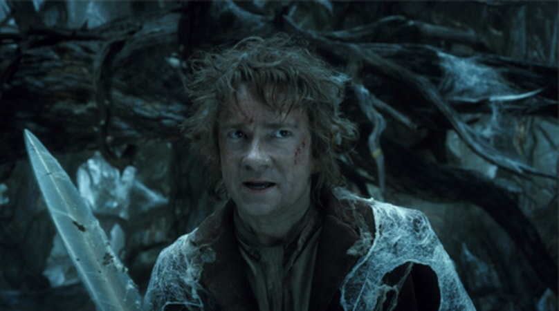 The Hobbit: The Desolation of Smaug - Image 18