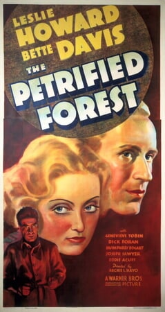 The Petrified Forest - Image - Image 11