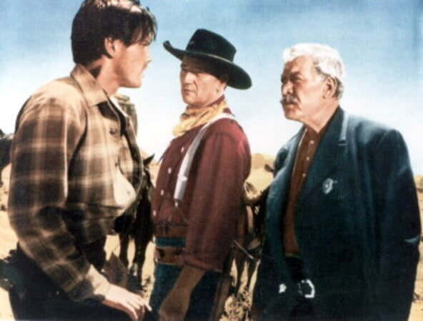 The Searchers - Image - Image 5