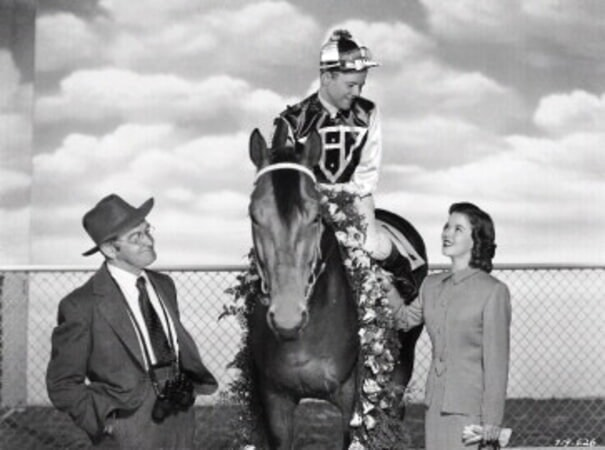 The Story of Seabiscuit - Image - Image 7