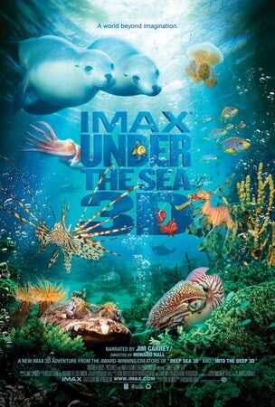 Under the Sea - Image - Image 44