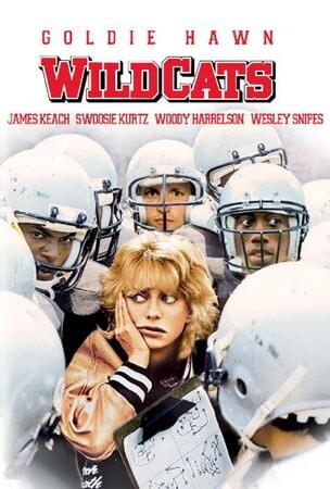 Wildcats - Image - Image 14