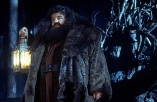 Harry Potter and the Sorcerer's Stone - Image - Image 19