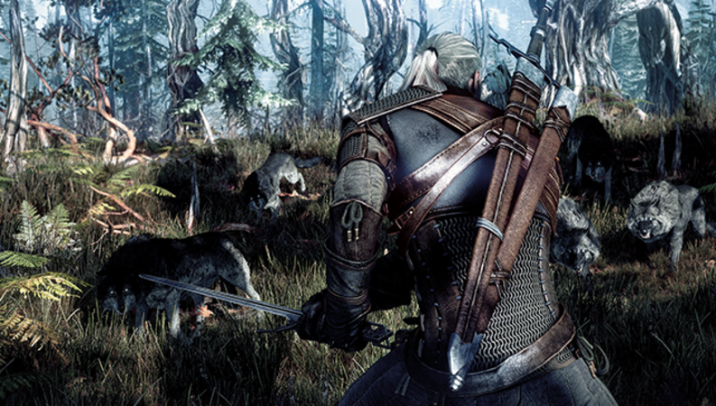The Witcher 3: Wild Hunt - Image - Image 8