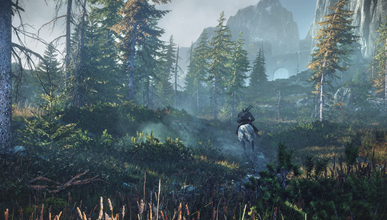 The Witcher 3: Wild Hunt - Image - Image 9