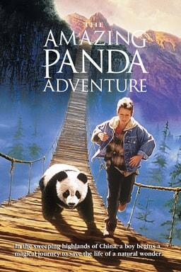 Amazing Panda Adventure keyart